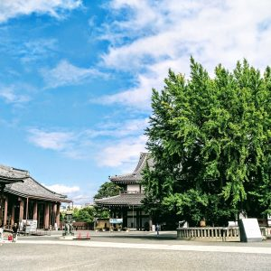 秋の奈良・京都の旅[4]:西本願寺・京都駅周辺
