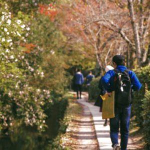 秋の京都・第二幕[8]:心静まる「哲学の道」