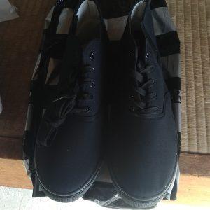 靴のダイワ:靴購入~:17.12.24