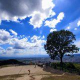 真夏の若草山 | 関西夏季休暇録