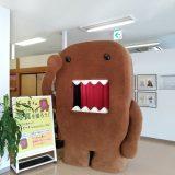 ワープステーション江戸 | 茨城旅散策