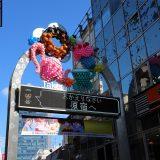 原宿・竹下通り、超混在!!|東京桜ツアー2019