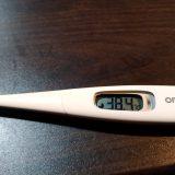 魔の2月!??38.4℃、久々の発熱!