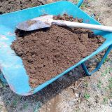 土壌改良が必要かな|農作物への挑戦!