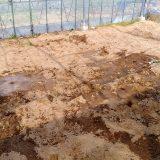 ジャガイモの盛り土解体作業とハウス裏の除草|農作物への挑戦!
