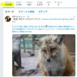 10,000ツイート達成!
