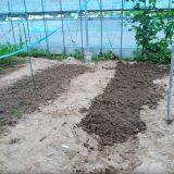 土壌改良、土の入れ替え:19.07.01|農作物への挑戦!