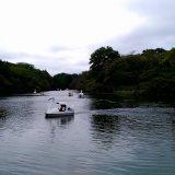 井の頭恩賜公園・井の頭自然文化園❗|東京飲み歩き旅2019