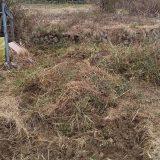 耕し、枯れ草を埋めて|畑仕事2020