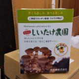 3個目のシイタケ栽培キット購入!
