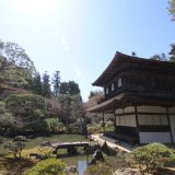 銀閣寺・哲学の道|京都桜ツアー2020