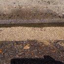 草対策に「固まる砂」