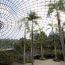 広大な植物園「とっとり花回廊」|初の山陰4連休~