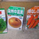 野菜のタネを植える!