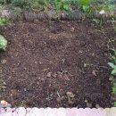 花壇の整理と草刈り!