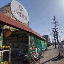 藤枝の園芸店:「小澤農園 ろくなん店」で果樹購入!